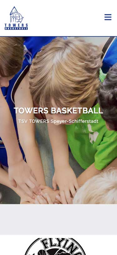 Towers Basketball Speyer